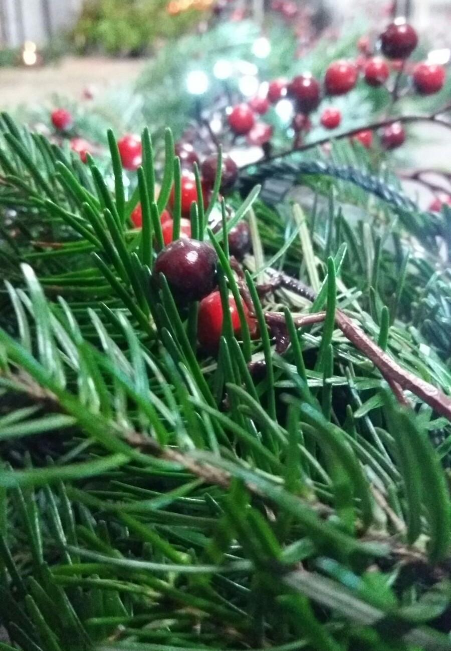 festoni e ghirlande natalizie