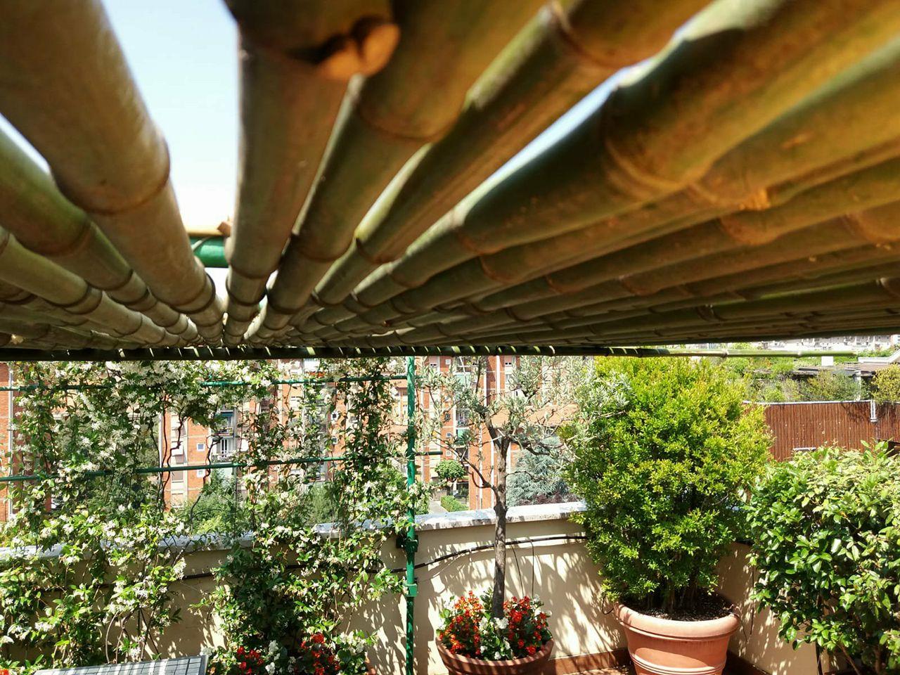 milano realizzazione di pergolato in bamb fratelli